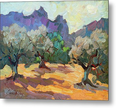 Saint Remy Olive Trees Metal Print by Diane McClary