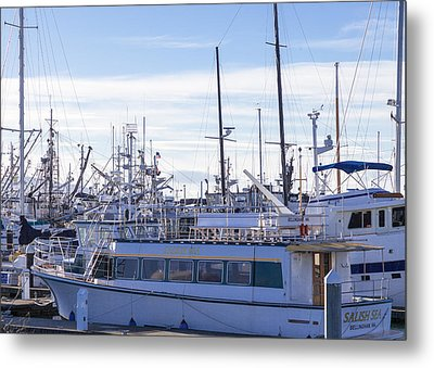 Salish Sea Metal Print