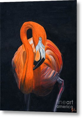 Sally The Flamingo Metal Print by Jane Axman