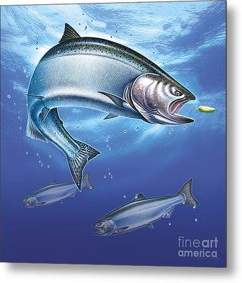 Salmon  Metal Print by Jon Q Wrioght