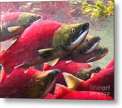 Salmon Run - Painterly Metal Print by Wingsdomain Art and Photography