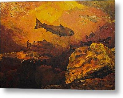 Salmon Run Metal Print by Terry Gill