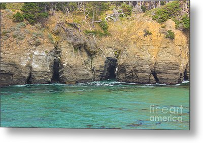 Salt Point Sea Caves Metal Print by Suzanne Luft