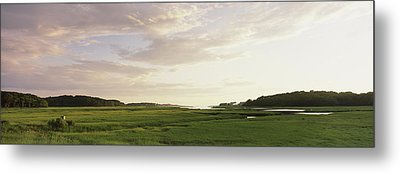 Salt Pond In A Forest, Cape Cod Metal Print