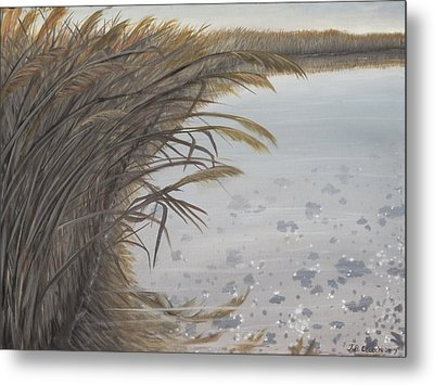 Salt Swamp #2  Metal Print