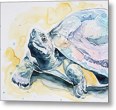Sammy The Turtle Metal Print
