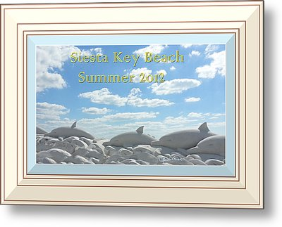 Sand Dolphins - Digitally Framed Metal Print by Susan Molnar