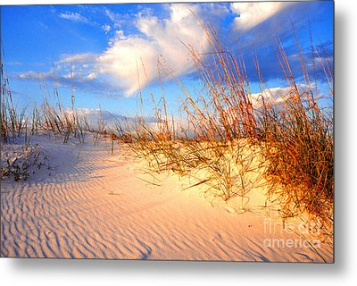 Sand Dune And Sea Oats At Sunset Metal Print by Thomas R Fletcher