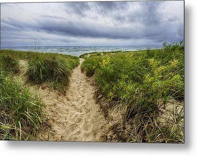 Sand Dunes Beach Path Metal Print by Sebastian Musial