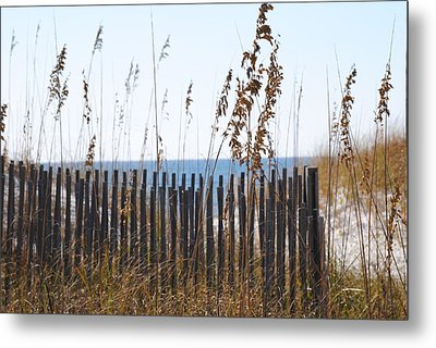 Sand Dunes Metal Print by Michele Kaiser