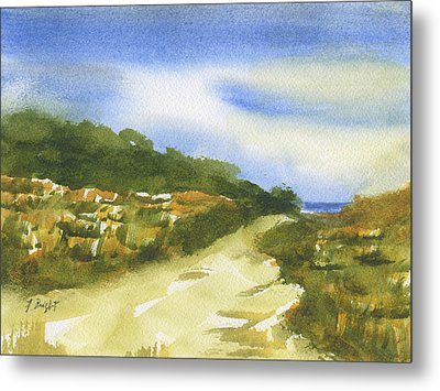 Sand Dunes On Hilton Head Island Metal Print
