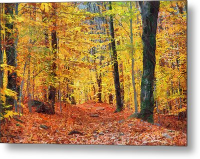 Sand Run Metro Park Metal Print by Anthony Caruso