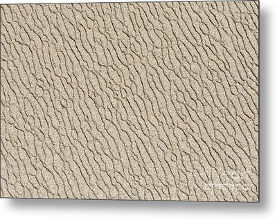 Sand Skin Metal Print by Artist and Photographer Laura Wrede