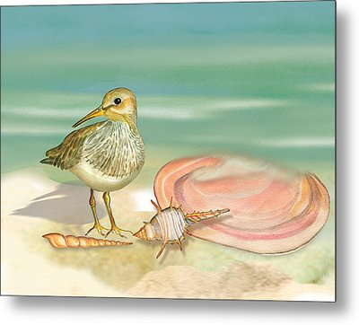 Sandpiper On Beach Metal Print by Anne Beverley-Stamps