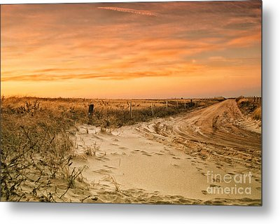 Sandy Road Leading To The Beach Metal Print