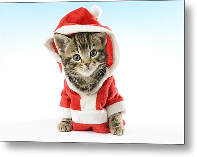 Santa Claws Metal Print