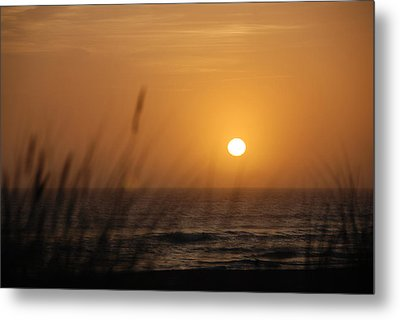 Metal Print featuring the photograph Santa Cruz Sunset by Shane Kelly