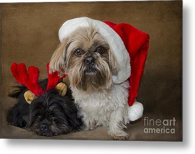 Santa I Am Tired  Metal Print by Nicole Markmann Nelson