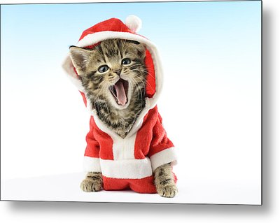 Santa Kitten Yawns Metal Print