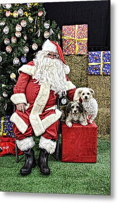 Santa Paws  Metal Print by Helen Akerstrom Photography