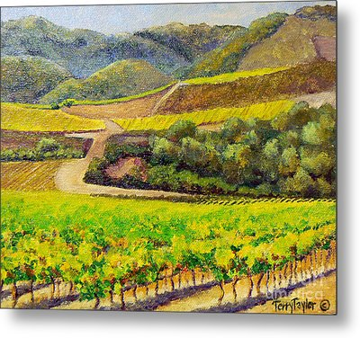 Santa Rita Color Metal Print by Terry Taylor