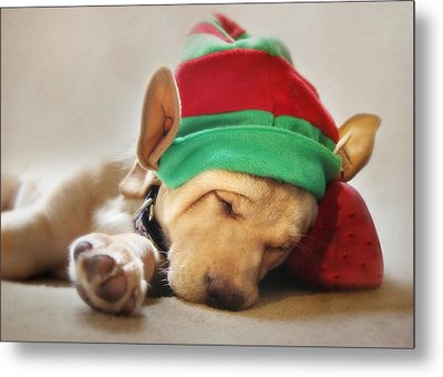Santa's Helper Metal Print by Lori Deiter
