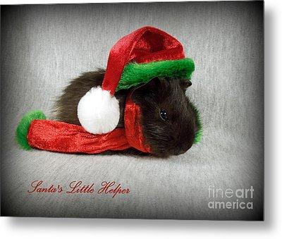 Santa's Little Helper Metal Print by Renee Trenholm