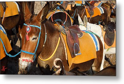 Santorini Donkeys Ready For Work Metal Print