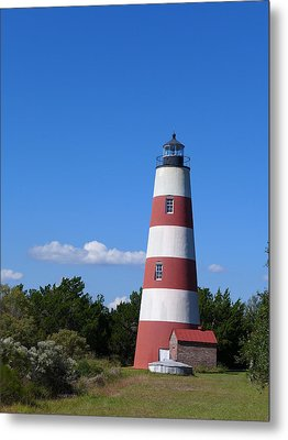Sapelo Light Metal Print
