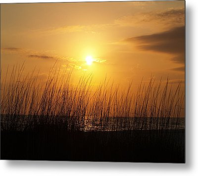 Sarasota Sunset's Metal Print