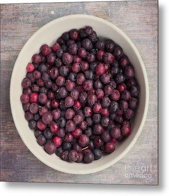 Saskatoon Berries Metal Print by Priska Wettstein