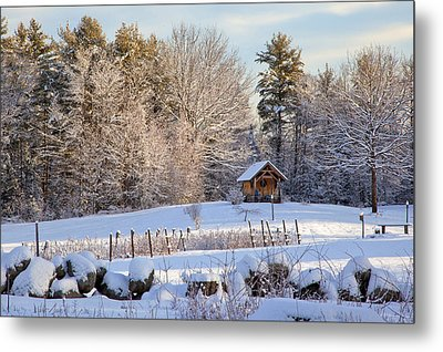 Metal Print featuring the photograph Sauna Shed by Larry Landolfi