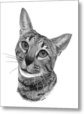 Savannah Cat Metal Print