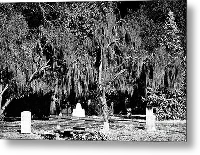 Savannah Resting Place Metal Print by John Rizzuto