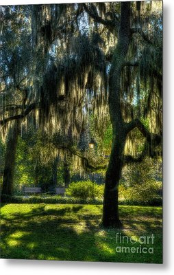 Savannah Sunshine Metal Print