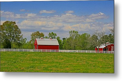 Metal Print featuring the photograph Sc Horse Farm by Andy Lawless