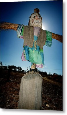 Metal Print featuring the photograph Scarecrow In Filed by Michael Edwards