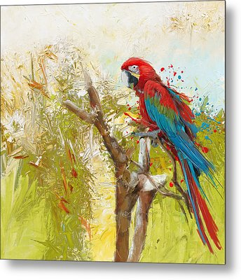 Scarlet Macaw Metal Print by Catf