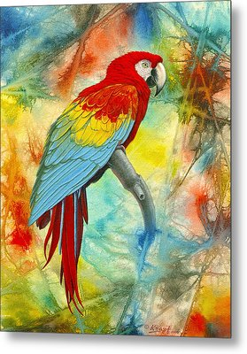 Scarlet Macaw In Abstract Metal Print by Paul Krapf
