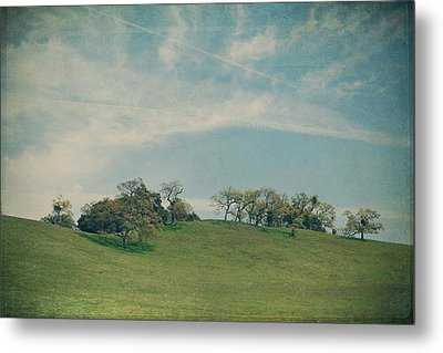 Scattered Along The Hilltop Metal Print by Laurie Search