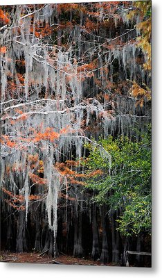 Metal Print featuring the photograph Scattered Rust by Lana Trussell