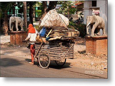 Scavenger Metal Print by Rick Piper Photography