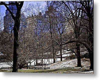 Scene From Central Park - Nyc Metal Print by Madeline Ellis