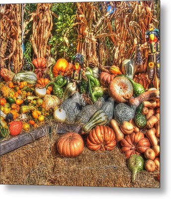 Scenes Of The Season Metal Print by Joann Vitali
