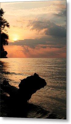 Scenic Beach Driftwood Sunset Metal Print by Heather Allen