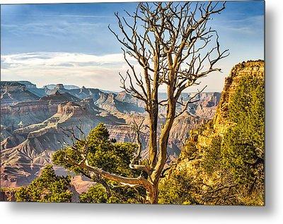 Scenic Grand Canyon Metal Print