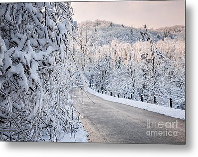 Scenic Road In Winter Forest Metal Print by Elena Elisseeva