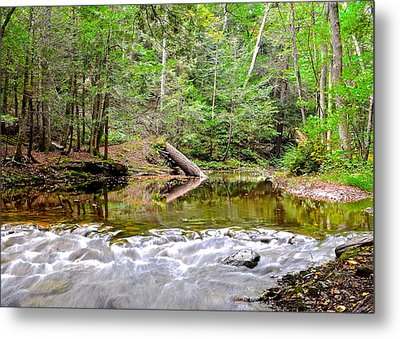 Scenic Seclusion Metal Print
