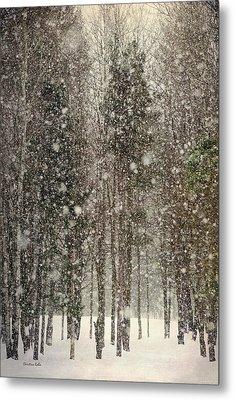 Scenic Snowfall Metal Print by Christina Rollo