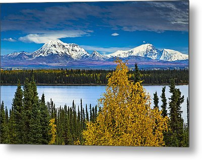 Scenic View Of Mt. Sanford L And Mt Metal Print by Sunny Awazuhara- Reed